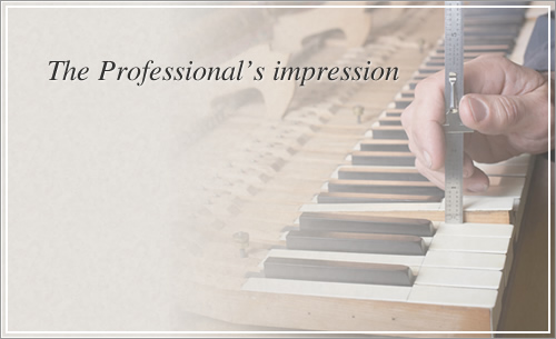 The Professional's impression